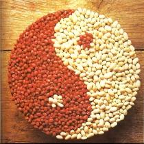 yin yang food